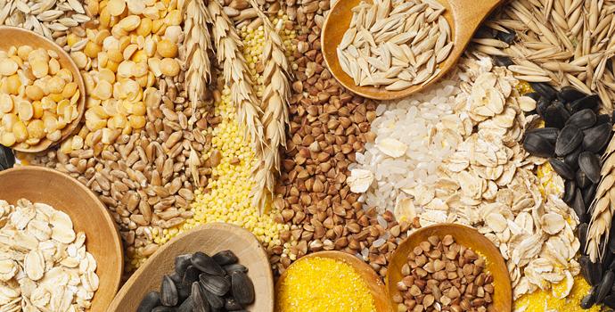La nourriture, est-elle la nouvelle médecine miracle ?